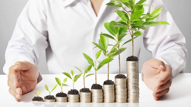 lic investment plan